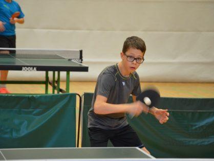 LASEL 01/02/18 Tennis de table aff. A, B, C,