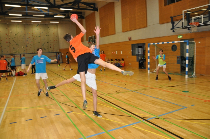 LASEL - Compétitions du 01/02/2018 & 08/02/18 - Tennis de table, Natation & Handball