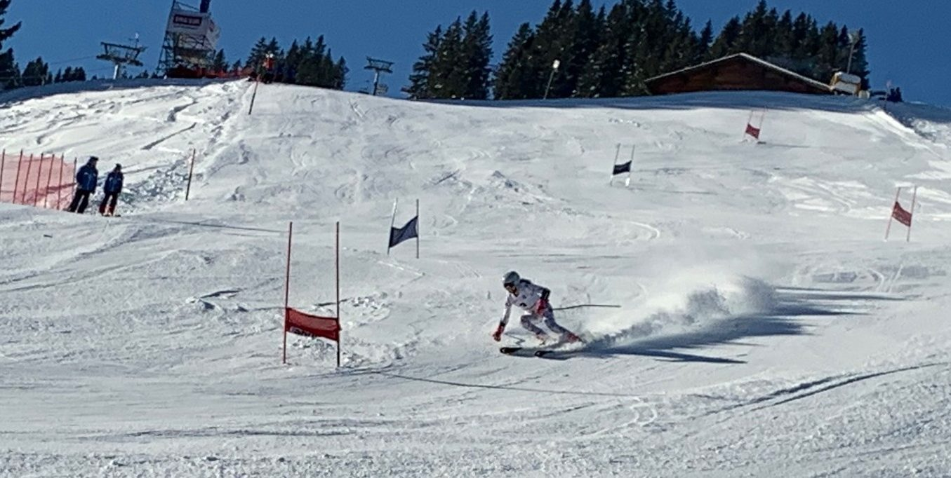 LASEL/FLS 17-20/01 Ski
