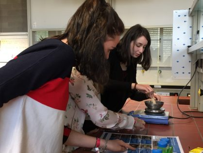 Les classes des sections B et C au SCIENTEENS LAB