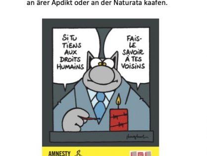 Amnesty 2020
